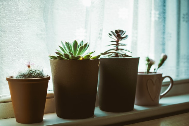 Window Sills For Home Improvement Projects
